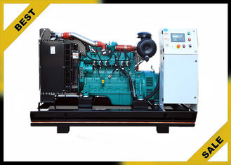 50 Hz Natural Gas Powered Generator , 200 Kw Gas Electric Generator Ac Three Phase